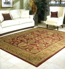rug burdy 8 x rugs reviews nourison timeless peacock area