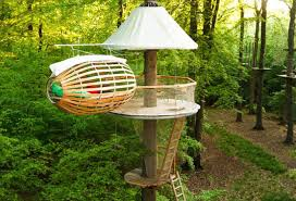 simple tree house pictures. Simple Tree House Plans Designs Pictures