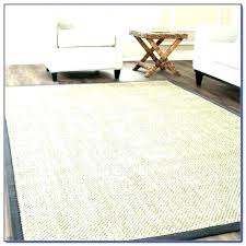 8 x10 rug home and furniture remarkable jute area rugs at com natural fiber collection