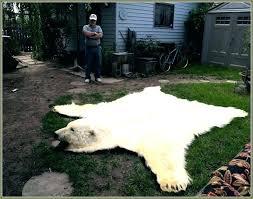 bear rug faux faux bear rug large faux polar bear rug with head