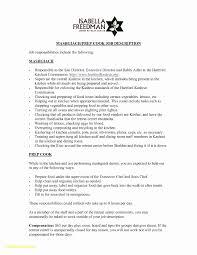 Example Of Resume New Luxury Outdoor Resume Template Elegant Resume