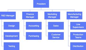 Simple Organizational Structure Chart Barca Fontanacountryinn Com