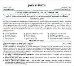 Sales Executive Resume Template Sales Executive Resume Template