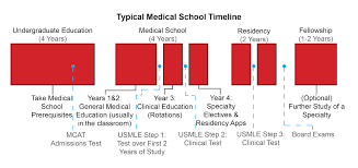 medical school timeline med school timeline science medicine medical school timeline med school timeline