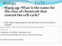 biology warm up what is a mutation ppt  20 biology