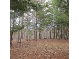 Pine City MN Real Estate Listings