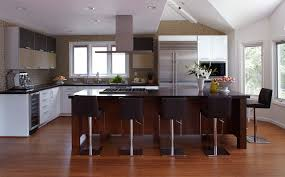 Modern Wood Kitchen Cabinets Modern Wood Kitchen Cabinets With Solid Materials With Panel