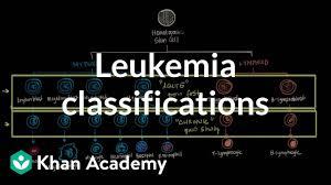 Leukemia Classifications Video Leukemia Khan Academy