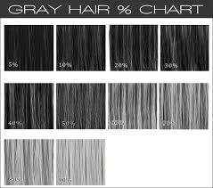 Gray Hair Color Chart Gray Hair Wig Color Chart Gracelacewigs In 2019 Grey
