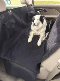 the 25 best dog car barriers of 2020