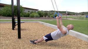 rings and climbing ropes for movestrong t rex outdoor fitness equipment you