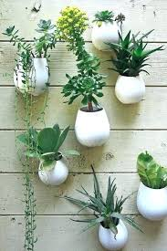 wall mounted plants wall mounted plants succulent wall garden with planters indoor wall mounted plants wall wall mounted plants