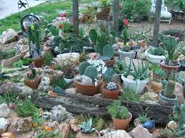 Small Picture 56 best CACTUS GARDEN IDEAS images on Pinterest Cacti garden