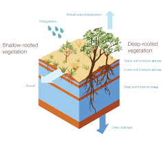 Irrigation Design Australia Australian Landscape Water Balance Irrigation Australia