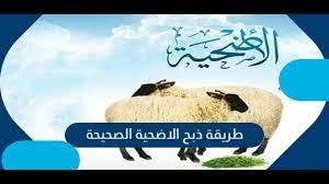 طريقة ذبح الأضحية حسب الشريعة الاسلامية - YouTube