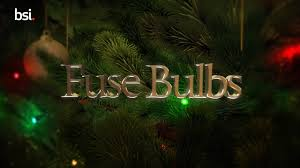 Christmas Lights Fuse Bulb Christmas Lights Safety Tips How To Replace The Fuse Bulb
