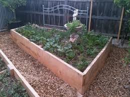 if kitset beds aren t your thing it would be our pleasure to come on over and make a fine job of personally installing some veg beds either wicking or