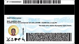 Wjax-tv Florida Id Licenses Cards Driver's New Photos