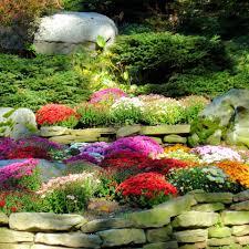 Fall Gardening Great Plants To Grow In The FallFall Gardening