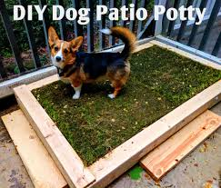 how to build a diy patio potty for your dog