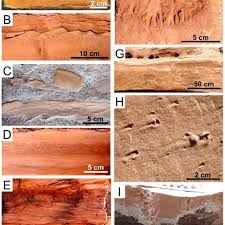sedimentary structures a trough cross