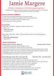 Professional Resume Example 2018