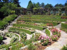 berkeley rose garden california