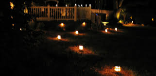 yard and deck at night lit by landscape lighting