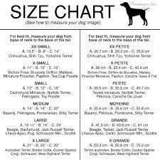 Terrier Size Chart Beware Of Wiggle Dog Dress