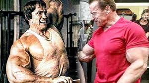 Arnold Gym Workout Chart Arnold Schwarzenegger Gym Training In 2019 Still Working Out Strong At 71 Years Old