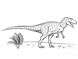 Dinosaur Free Coloring Pages - chuckbutt.com