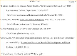 Essay In Format Template Twenty Co Mla Citation Text Internet Source