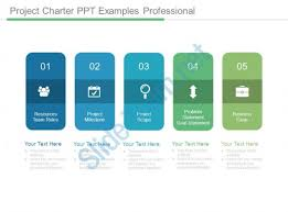 Examples Of Professional Powerpoint Presentations Project Charter Ppt Examples Professional Powerpoint Slide