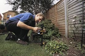 cat repellent for garden. Cat Repellent For Garden