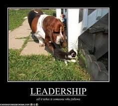 Funny Quotes About Leadership. QuotesGram via Relatably.com