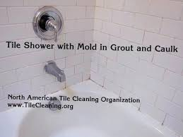 how to get rid of mold in bathroom. How To Remove Mold From Bathroom Walls Get Rid Of Mildew In Shower Caulk Behind