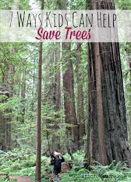 ways kids can help save trees com trees provide us oxygen and ensure that the earth s temperature is livable what can