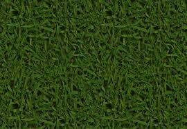 16 Free Tileable Grass Texture FreeCreatives