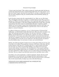 the opinion essay example the opinion essay your creative muse