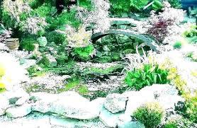 small rockery garden ideas small rock n ideas indoor front design small rockery garden ideas uk