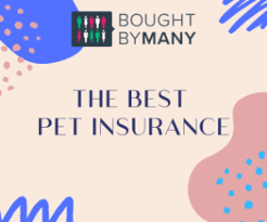 Dogs are notorious for finding trouble when you least expect it, which can lead to unexpected veterinary. Best Dog Insurance 2021 Compare Companies Bought By Many