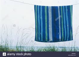 Image Mat Striped Beach Towel Hanging On Clothesline Tall Grass In Background Alamy Striped Beach Towel Hanging On Clothesline Tall Grass In