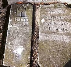 Mary Polly Barnett Johnson (1778-1844) - Find A Grave Memorial