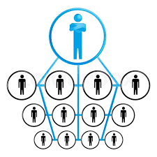 Organization Chart Vector Illustration Of Organization Chart On Stock Vector