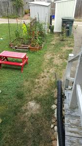 photo of trugreen lawn care lorton va united states their treated lawn
