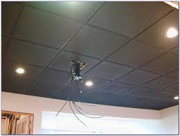 drop ceiling exquisite painting panels picture