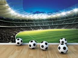 Voetbalbehang I Voetbalwinkel Dinoworld