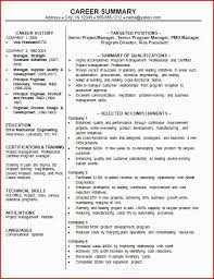 Career Summary Examples For Resume Beauteous Professional Summary On A Resume Examples Fresh Gallery Of Resume
