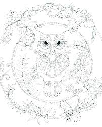Coloring Pages Owl Pictures Of Owls Page Adult Book Coloring Pages