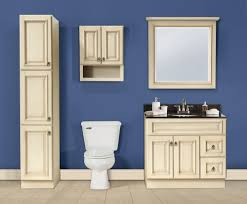 White Bathroom Cabinets Wall Antique White Over The Toilet Cabinet Creative Cabinets Decoration